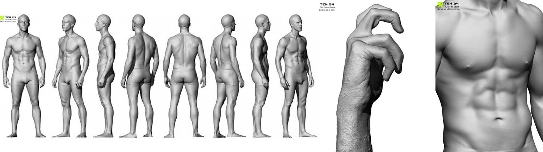 مدل سه بعدی آناتومی بدن