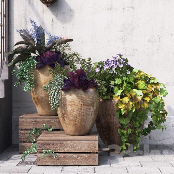 آبجکت گل و گیاه