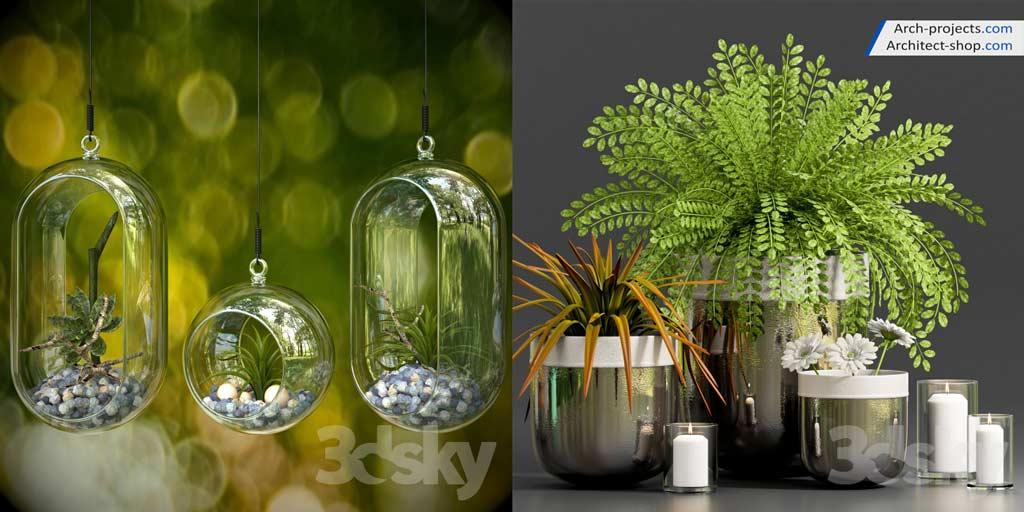 آبجکت گیاهان تری دی مکس