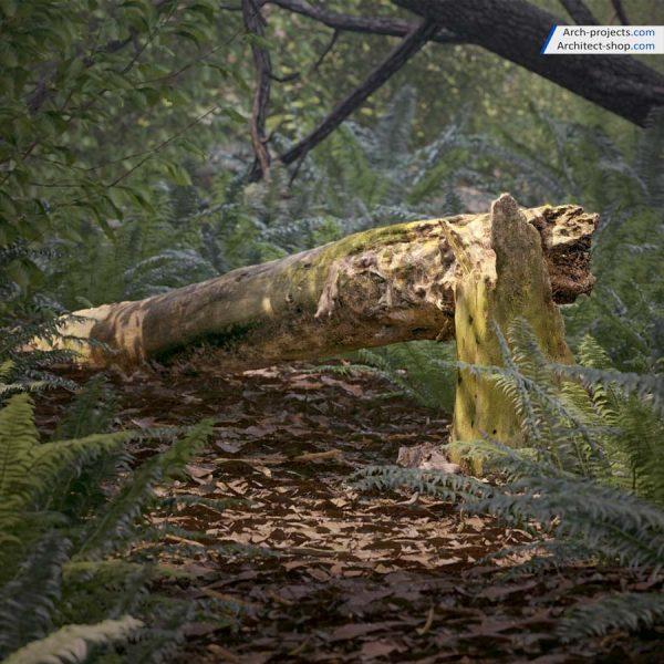 مدل سه بعدی شاخ و برگ و تنه درختان