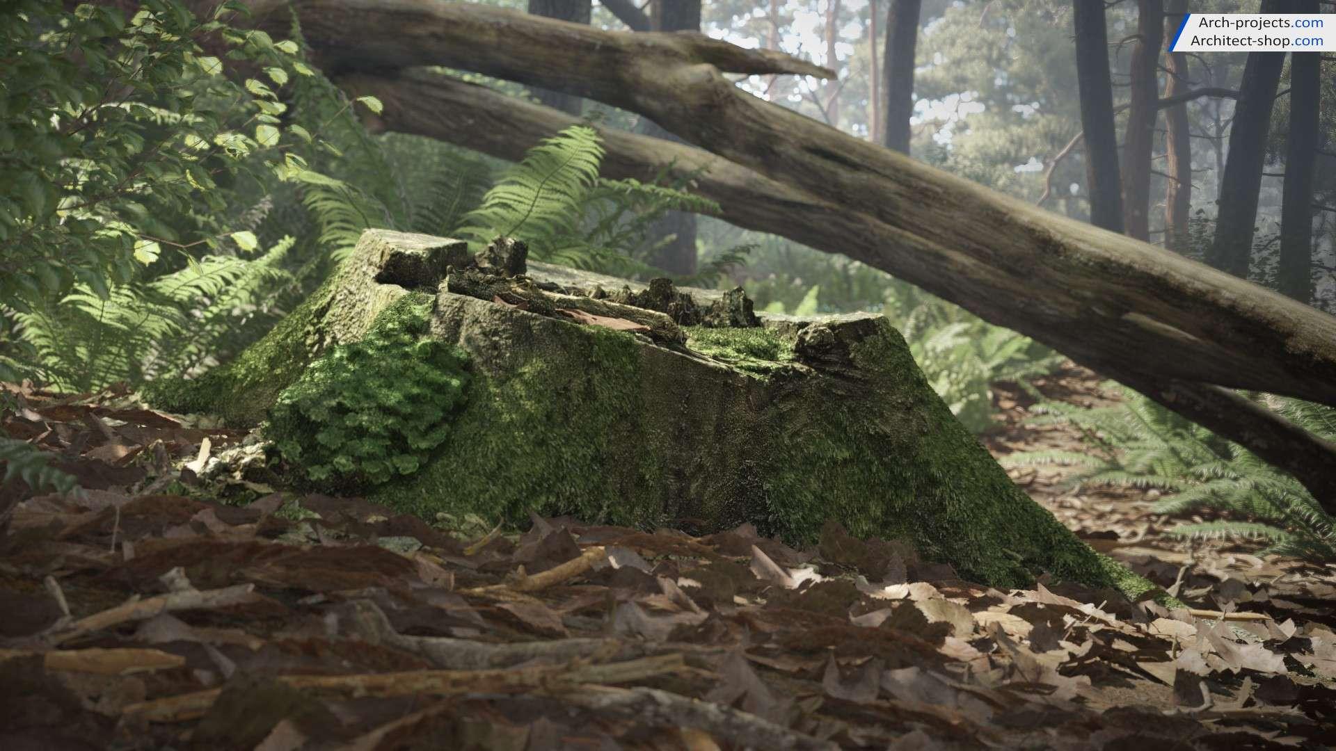 آبجکت تنه درختان