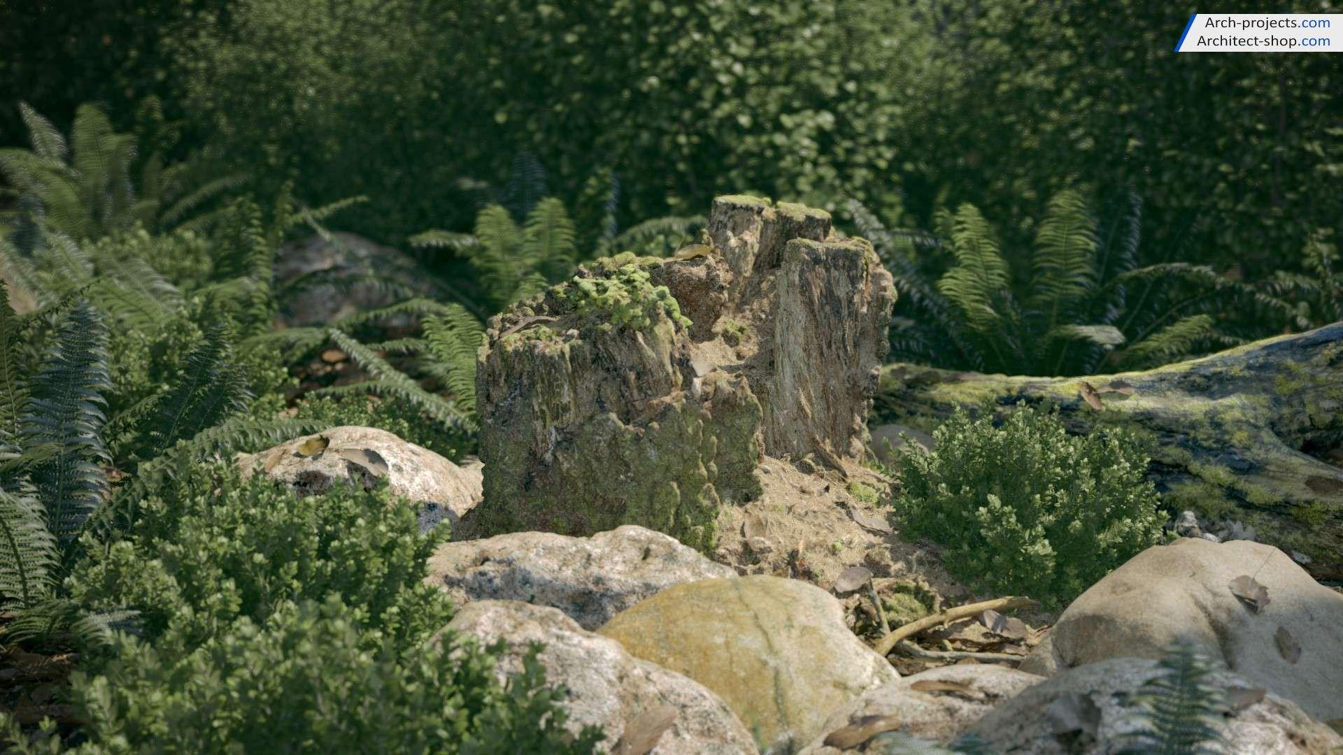 مدل سه بعدی تنه درختان